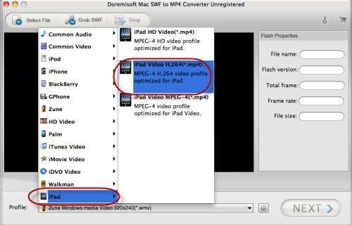 SWF to MP4, MOV, FLV, etc on Windows or Mac
